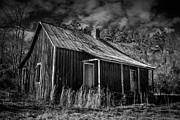 Tammy Chesney - Old Homestead