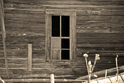 Old Country Roads Photos - Old House 27 by Andy Savelle