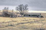 Colorado Greeting Cards Prints - Old House on Pawnee Grasslands Colorado. Print by James Steele