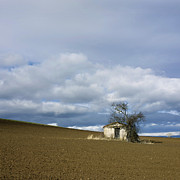 Shed Photo Prints - Old hut. Auvergne. France Print by Bernard Jaubert