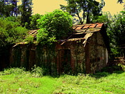 Salman Ravish - Old Hut