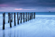 Dunedin Prints - Old Jetty Pilings Dunedin New Zealand Print by Colin and Linda McKie