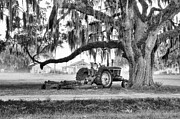 Rural Landscapes Photos - Old John Deere Under Live Oak by Scott Hansen