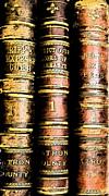 Old Ledgers Print by Lovina Wright