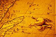 Monster Photo Prints - Old Map of Africa Madagascar With Sea Monster Print by Colin and Linda McKie