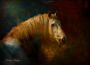 White Horses Framed Prints - Old Master...Himself Framed Print by Dorota Kudyba