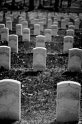 Funeral Photos - Old Military Graves by Amy Cicconi