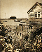 Old Packing Shed Print by Alan  Bedding