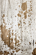 Old Painted Wood Abstract No.3 Print by Elena Elisseeva
