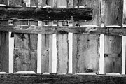 Harsh Conditions Framed Prints - old patched up wooden fence using old bits of wood in snow Forget Framed Print by Joe Fox