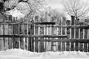 Harsh Conditions Prints - old patched up wooden fence using old bits of wood in snow Forget Saskatchewan Canada Print by Joe Fox