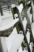 Winter Scene Mixed Media Metal Prints - Old picket fence in snow Metal Print by adSpice Studios