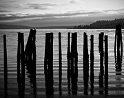 Ruston Framed Prints - Old Pilings on Puget Sound - Tacoma - Washington - August 2013 Framed Print by Steve G Bisig