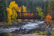Mark Kiver Prints - Old Pipeline Bridge Print by Mark Kiver