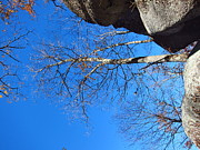 Oldrag Prints - Old Rag Hiking Trail - 121211 Print by DC Photographer