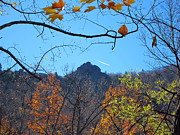 Oldrag Prints - Old Rag Hiking Trail - 121212 Print by DC Photographer