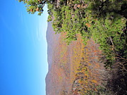 Hiking Photos - Old Rag Hiking Trail - 121224 by DC Photographer