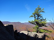 Va Prints - Old Rag Hiking Trail - 121230 Print by DC Photographer