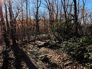 Trail Photos - Old Rag Hiking Trail - 121248 by DC Photographer