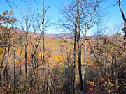 Hiking Prints - Old Rag Hiking Trail - 12128 Print by DC Photographer