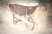 Carolina Liechtenstein - Old Ranch Wheel Barrow
