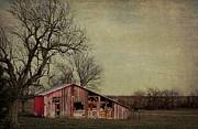 Old Barns Photo Prints - Old red barn Print by Elena Nosyreva