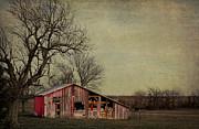 Elena Nosyreva - Old red barn