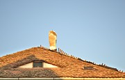 Ion vincent DAnu - Old Roof with  A Chimney and A Triangular Attic Window