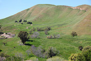 Bay Area Photo Prints - Old Rose Hill Cemetery Atop The Rolling Hills Landscape of The Black Diamond Mines California 5D2231 Print by Wingsdomain Art and Photography