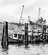 Boaters Photo Prints - Old Salty Print by Debra Forand