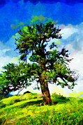 Pear Tree Paintings - Old savage pear tree painting by Magomed Magomedagaev