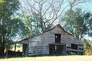 Old Country Roads Photos - Old Shed 11 by Andy Savelle