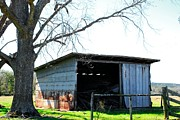 Old Country Roads Photos - Old Shed 18 by Andy Savelle