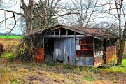 Dothan Alabama Framed Prints - Old Shed 19 Framed Print by Andy Savelle