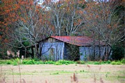 Old Country Roads Photos - Old Shed 23 by Andy Savelle