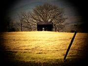 Old Shed Print by Michael L Kimble