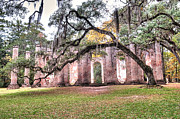 South Carolina Trees Framed Prints - Old Sheldon Church - Bending Oak Framed Print by Scott Hansen