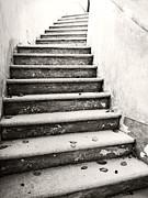 Marilyn Hunt - Old Steps 1