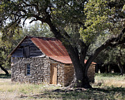 Tin Roof Posters - Old Stone Cabin Poster by Terry Fleckney