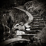 Old Stone Stairway Print by Charmian Vistaunet