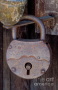 Life Gone Posters - Old Time Padlock Poster by Sandra Bronstein