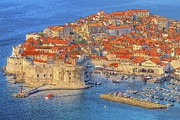 Red Tile Roof Posters - Old Town Dubrovnik Poster by Douglas J Fisher