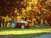 Suzi Nelson Framed Prints - Old Tractor in a Carolina Fall Framed Print by Suzi Nelson