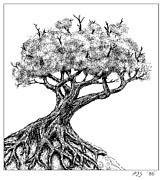 Tree Roots Digital Art Posters - Old Tree  MacPaint 1986 Poster by Peter J Sucy
