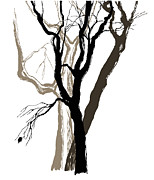 Handmade Digital Art Posters - Old Trees Drawing  Graphic  Sketch Poster by Yana Vergasova