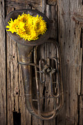 Spider Framed Prints - Old tuba and yellow mums Framed Print by Garry Gay