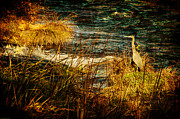 Mick Anderson - Old View Heron Watch