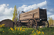 JPLDesigns - Old Wagon at Farm Ranch