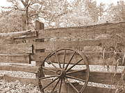 Board Fence Prints - Old Wagon Wheel in Sepia  Print by Cheryl Hardt