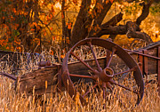 Derelict Prints - Old Wagon Wheel Print by Marc Crumpler